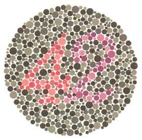Siz de Renk Körü Olabilir misiniz? Hemen Test Edin!