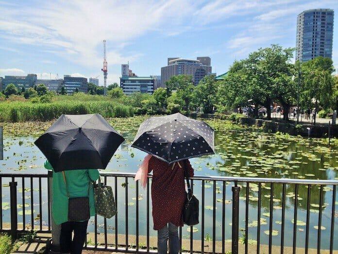 şemsiyeli kızlar