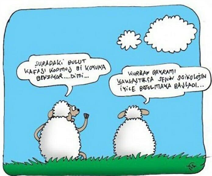 En Güzel Kurban Bayramı Karikatürleri