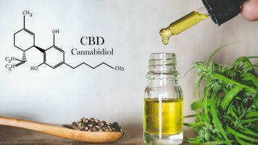 CBD Gerçekten Mucizevi Bir İlaç Mı?