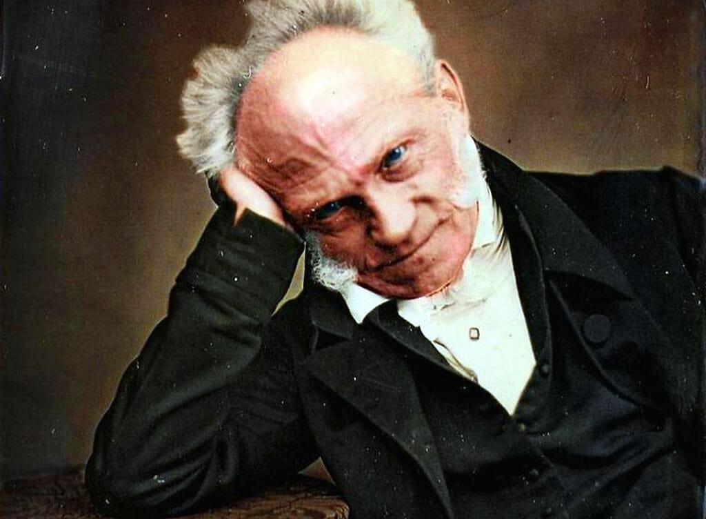 Schopenhaouer Felsefesi Üzerinden Hayata Dair Bazı Şeyler Ve Doğ